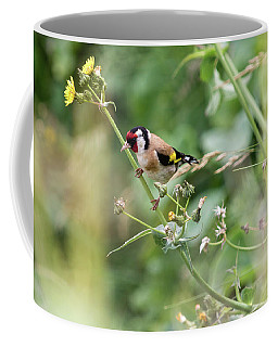 European Goldfinch Perched On Flower Stem B Coffee Mug