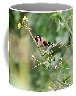 European Goldfinch Perched On Flower Stem B Coffee Mug