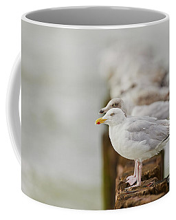 Coffee Mug featuring the photograph European Herring Gulls In A Row Fading In The Background by Nick Biemans