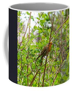 European Robin Coffee Mug