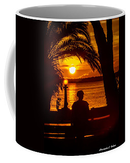 Coffee Mug featuring the photograph Eustis Sunset by Christopher Holmes