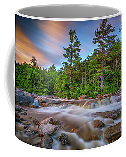 Coffee Mug featuring the photograph Evening At Lower Falls by Rick Berk