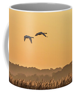 Evening Flight Home Coffee Mug
