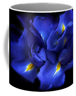 Evening Iris Coffee Mug