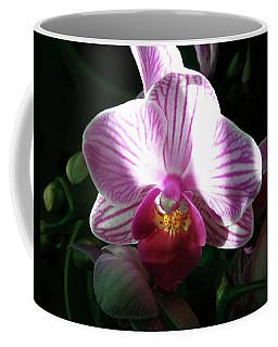 Evening Orchid Coffee Mug