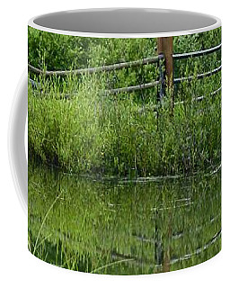 Evening Reflection Coffee Mug