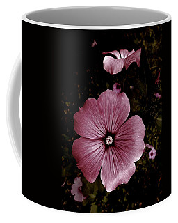Coffee Mug featuring the photograph Evening Rose Mallow by Danielle R T Haney