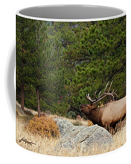 Evening Song Coffee Mug