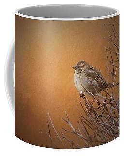 Evening Sparrow Song Coffee Mug