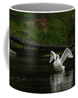 Coffee Mug featuring the photograph Evening Stretch by Ronnie and Frances Howard