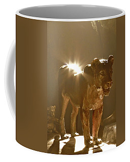 Evening's Light Coffee Mug