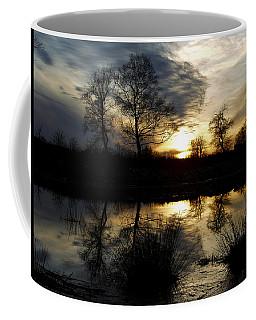 Everglade View Coffee Mug