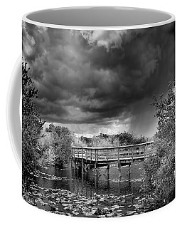 Everglades 0823bw Coffee Mug