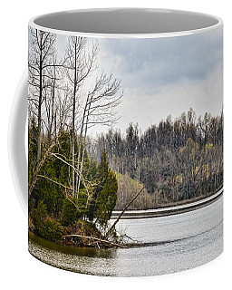 Evergreen Point 1a Coffee Mug by Greg Jackson