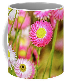 Everlasting Daisies, Kings Park Coffee Mug by Dave Catley