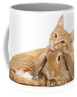 Everybody Needs A Bunny For A Pillow Coffee Mug