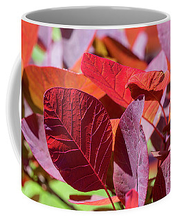 Coffee Mug featuring the photograph Everything Is Extraordinary by Linda Lees