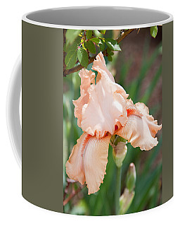 Coffee Mug featuring the photograph Everything Is Peachy by Sherry Hallemeier