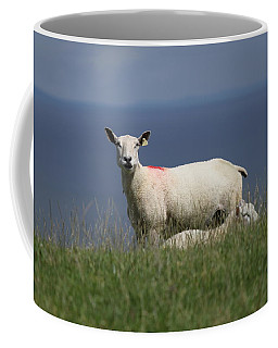 Ewe Guarding Lamb Coffee Mug