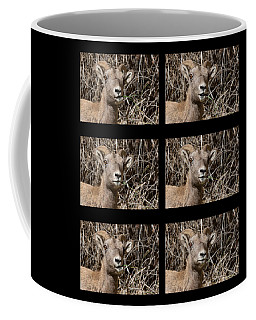 Ewe Just Be Happy  Coffee Mug