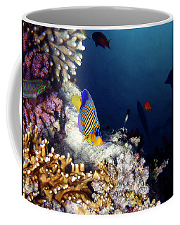 Exciting Red Sea World Coffee Mug