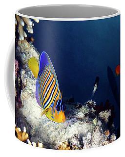 Exciting Red Sea World Coffee Mug