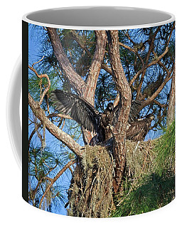 Exercising Eaglets Coffee Mug by Ronald Lutz