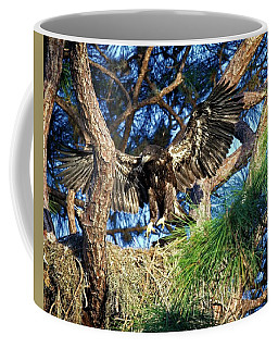 Exercising For 1st Flight Coffee Mug by Ronald Lutz