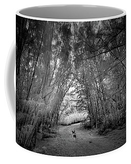 Exploration Coffee Mug