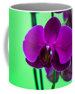 Exposed Orchid Coffee Mug
