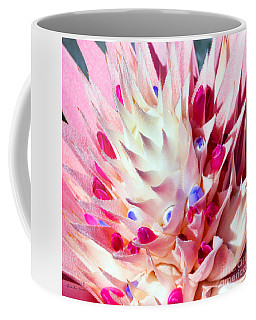 Expressive Bromeliad Photo C3517 Coffee Mug