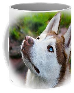 Expressive Siberian  Husky Photo C62017 Coffee Mug