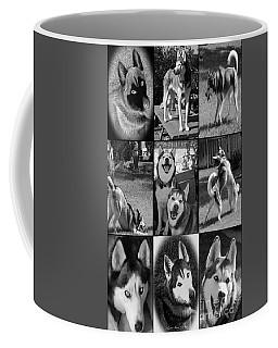 Expressive Siberian Huskies Collage C4517 Coffee Mug