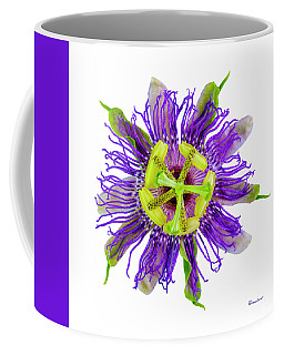 Expressive Yellow Green And Violet Passion Flower 50674a Coffee Mug