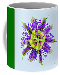 Expressive Yellow Green And Violet Passion Flower 50674b Coffee Mug