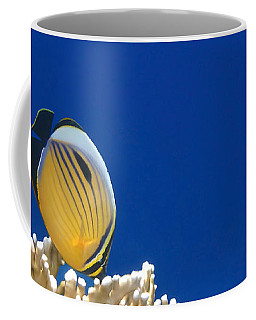 Exquisite Butterflyfish And Corals 3 Coffee Mug
