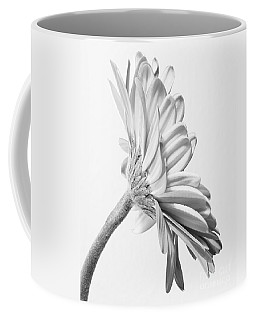 Exquisite Gerbera Daisy  Coffee Mug