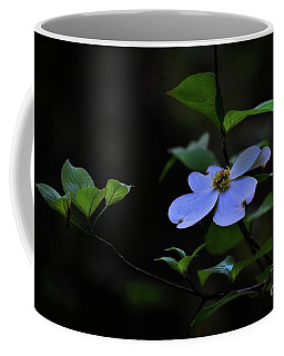 Coffee Mug featuring the photograph Exquisite Light by Skip Willits