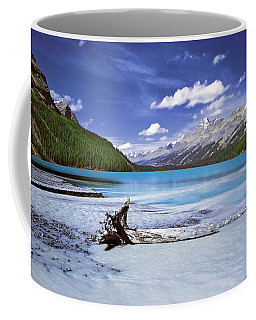 Exterior Decorations Coffee Mug