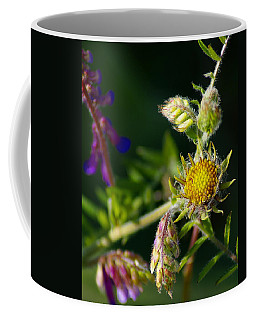 Eye Candy From The Garden Coffee Mug