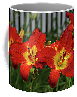 Coffee Mug featuring the photograph Eye Catching by Sandy Keeton