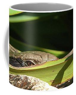 Eye Contact Coffee Mug by Evelyn Tambour