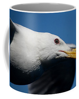 Eye Of A Seagull Coffee Mug