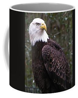 Eye Of The Eagle Coffee Mug