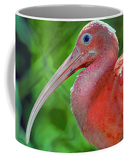 Eye Of The Ibis Coffee Mug