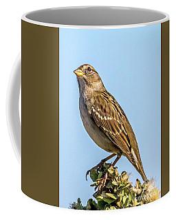 Eye On The Sky Coffee Mug