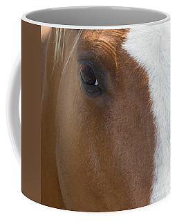Eye On You Horse Coffee Mug