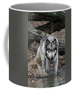 Eye On You Coffee Mug