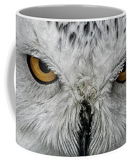 Coffee Mug featuring the photograph Eye-to-eye by Brad Allen Fine Art