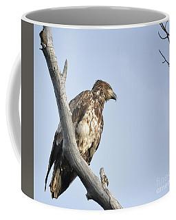 Eyeing For Fish Coffee Mug